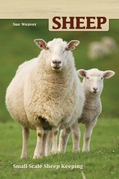 Sheep: Small-Scale Sheep Keeping For Pleasure And Profit