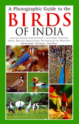 A Photographic Guide to the Birds of India: And the Indian Subcontinent, Including Pakistan, Nepal, Bhutanh, Bangladesh, Sri Lanka & the Maldives