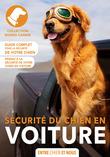 La sécurité du chien en voiture