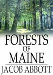 Forests of Maine: Marco Paul's Adventures in Pursuit of Knowledge
