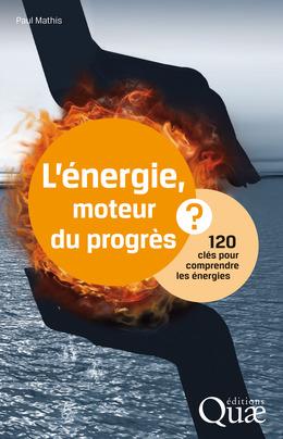 L'énergie, moteur du progrès ?