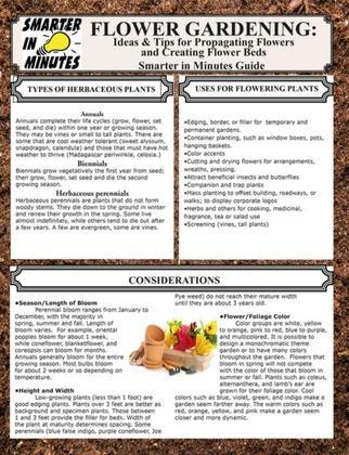 Flower Gardening: Ideas & Tips for Propagating Flowers and Creating Flower Beds