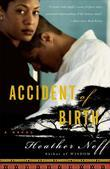 Accident of Birth: A Novel