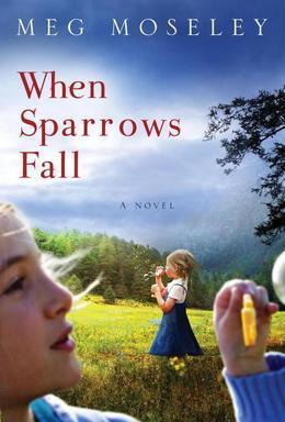 When Sparrows Fall: A Novel