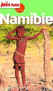 Namibie 2015 Petit Futé (avec cartes, photos + avis des lecteurs)