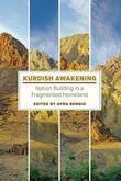 Kurdish Awakening: Nation Building in a Fragmented Homeland