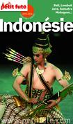 Indonésie 2015 Petit Futé (avec cartes, photos + avis des lecteurs)