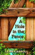 A Hole in the Fence: Getting to the Other Side of Divorce