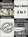 How the Slaves Came to America and Slavery In America
