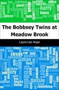 The Bobbsey Twins at Meadow Brook