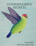 Hummingbird Secrets