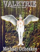 Valkyrie: Virtual Me Book 1
