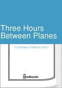 Three Hours Between Planes