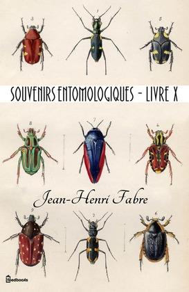 Souvenirs entomologiques - Livre X | Jean-Henri Fabre