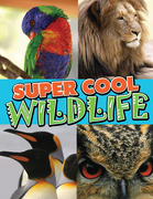 Super Cool Wildlife: From Lions to Penguins in the Wild