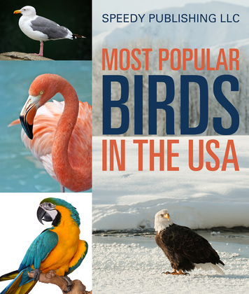Most Popular Birds In The USA: Children's Picture Book of Birds