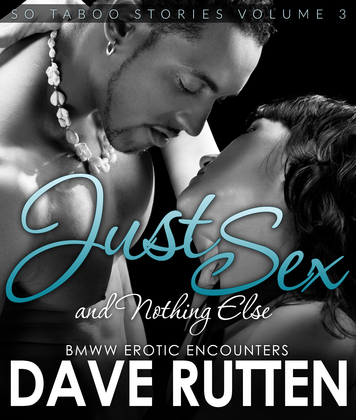 Just Sex And Nothing Else: BMWW Encounters So Taboo Stories Vol. 3