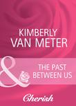 The Past Between Us (Mills & Boon Cherish) (Mama Jo's Boys, Book 1)