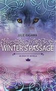 Winter's Passage (The Iron Fey)