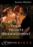 Their Private Arrangement (Mills & Boon Spice Briefs)