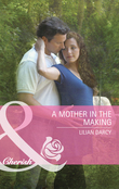 A Mother in the Making (Mills & Boon Cherish)
