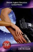 Secret Agent Reunion (Mills & Boon Intrigue) (Mission: Impassioned, Book 2)