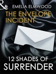 The Envelope Incident (Mills & Boon Spice Briefs)