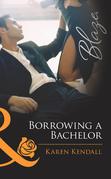 Borrowing a Bachelor (Mills & Boon Blaze)