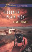 Hidden in Plain View (Mills & Boon Love Inspired Suspense)