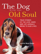 The Dog With The Old Soul