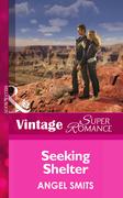 Seeking Shelter (Mills & Boon Vintage Superromance)