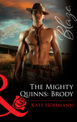 The Mighty Quinns: Brody (Mills & Boon Blaze)