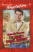 The Mighty Quinns: Brendan (Mills & Boon Temptation)
