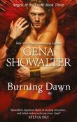Burning Dawn (Angels of the Dark, Book 3)
