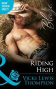 Riding High (Mills & Boon Blaze) (Sons of Chance, Book 16)