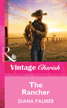 The Rancher (Mills & Boon Vintage Cherish)