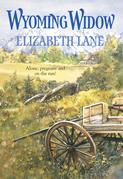Wyoming Widow (Mills & Boon Historical)
