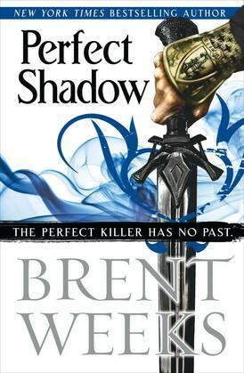 Perfect Shadow: A Night Angel Novella