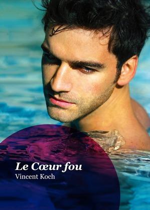 Le Cœur fou (roman gay)