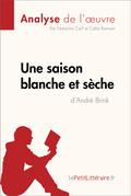 Une saison blanche et sèche d'André Brink (Analyse de l'oeuvre)