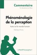 Phénoménologie de la perception de Merleau-Ponty - Autrui et le monde humain (Commentaire)