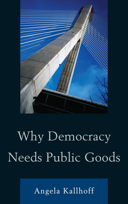 Why Democracy Needs Public Goods