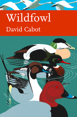 Wildfowl (Collins New Naturalist Library, Book 110)
