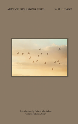 Adventures Among Birds (Collins Nature Library)