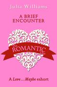 A Brief Encounter: A Love…Maybe Valentine eShort