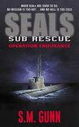 Seals Sub Rescue: Operation Endurance