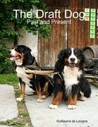 The Draft Dog - Past and Present