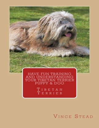 Have Fun Training and Understanding Your Tibetan Terrier Puppy & Dog