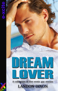 Dream Lover: A collection of five gay erotic short stories