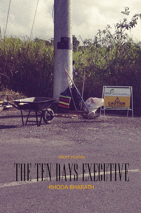 The Ten Days Executive: Short Stories